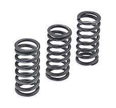 Milwaukee-Eight Clutch Springs -...
