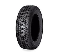 Dunlop 15 in. Rear - P205/65R15