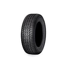 Dunlop 16 in. Rear - P205/60R16