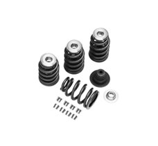 Performance Valve Spring Kit