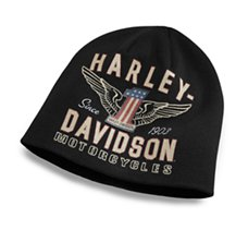 ab576cbc089 Winged  1 Knit Hat
